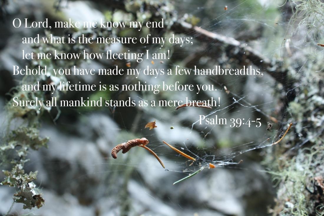 psalm 39.jpg